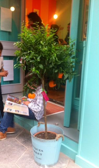 mandarinos en la entrada