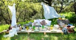 picnic ambiente