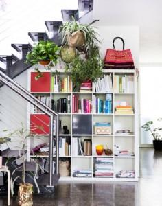 ambiente interior con plantas